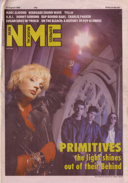 1988-08-22 NME 1 cover