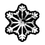 Icon Snow.png