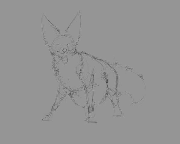 File:Fennec Wolf WIP 1.jpg