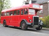 FlexCabanaBXW the Bus