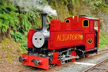 Alligator7989