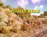 WoollyBearUStitlecard