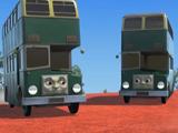 Los Autobuses Australianos
