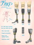 Firi prosthesis reference
