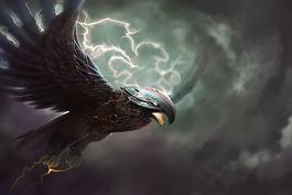 Eagle 450x300 07