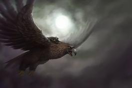 265px-Eagle 450x300 01