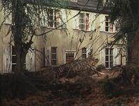 Alligator house attack