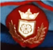 Commanders Cap badge