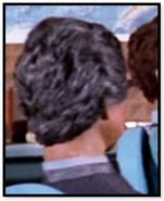 Man with grey hair (meeting)