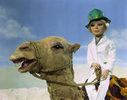 Penelope camel 4