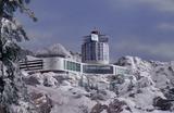 Paradise Peaks Hotel