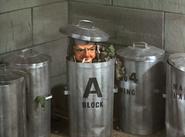 11 bins