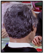 Man with grey hair back to camera