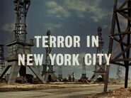 Terror In New York City