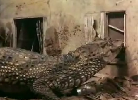 File:Thunderbirds Attack of the Alligators.png