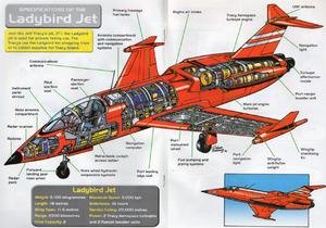Ladybird jet cutaway