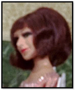 Lady with brown hair(tda)