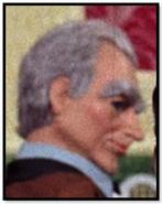 Man with grey hair(tda)