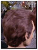 Man with brown hair (impostors)