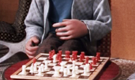 23 board