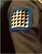 Arm patch (1)