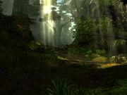 Jungle-v01