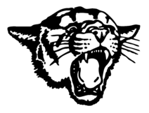 Cougar-Web-Logo