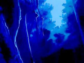 Midnight Woods2