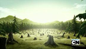 Forest of Magi Oar 2011