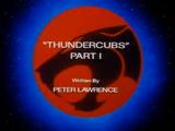 ThunderCubs - Part I
