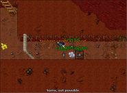 Grimvale Quest - An Ancient Feud Rats 2