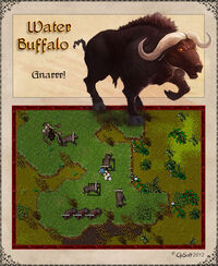 Water Buffalo Artwork