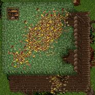 Outlaw Camp 1 (Floor 2)