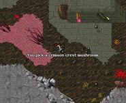 Glooth Factory Crimson Crest Mushroom