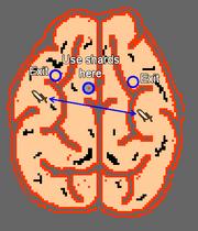 Ambassador's Mind Map