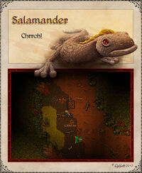 Salamander Artwork
