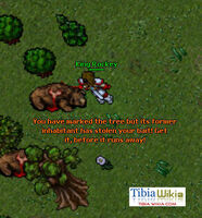The New Frontier Quest Mission 02 From Kazordoon With Love tree 1