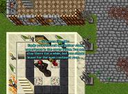 Sorc guild