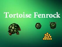LOOT TORTOISE