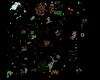 Minimap Floor 5