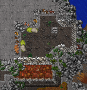 Caveman Shelter 2