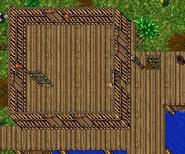 Jungle Edge 2