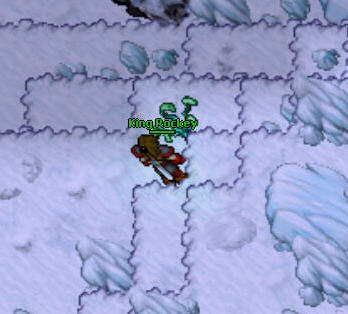 The Ice Islands Quest Nibelor 5 Cure the Dogs Frostbite Herb