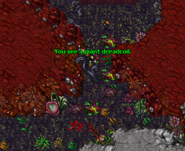 An Interest In Botany Quest Dreadcoil
