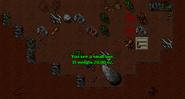 Pick Quest Minotaurs