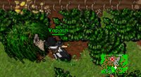 Rottin Wood and the Married Men Quest thief 2