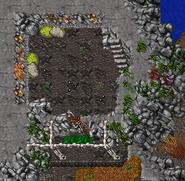 Caveman Shelter 1