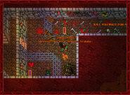 Scatterbrained Sorcerer Cellar4
