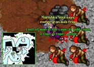 Man in the Cave for Tibia Wiki