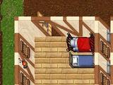 The City Wall 7e